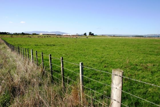 12.3ha Development Site, 146 Richardsons Line, Palmerston North